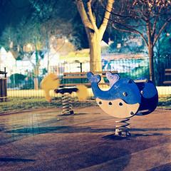 [Whale] (uderaglassbell) Tags: park longexposure 120 night mediumformat kodak shrewsbury whale orca tungsten portra expiredfilm killingtime portra100t 100t underaglassbell hasselblad203fe hasselbladv carlzeissplanar110mmf2 110mmf2planar planart2110fe