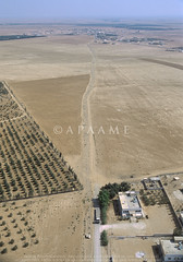 Jimal VNT (APAAME) Tags: flight2 flying2006 road roman vianovatraiana scannedfromslide aerialarchaeology aerialphotography middleeast airphoto archaeology ancienthistory