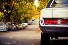 tail-lights (Mindfuel Photography) Tags: street autumn trees fall car vancouver taillights