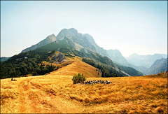 On the path (Katarina 2353) Tags: landscape photography photo nikon serbia srbija katarinastefanovic katarina2353