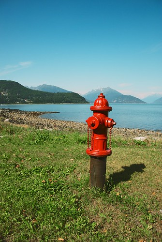Fire Hydrant in Haines