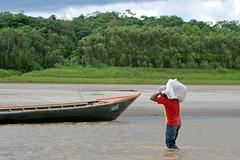 Entrega (ggallice) Tags: peru ro america river de gold amazon south per mining madre dios tambopata
