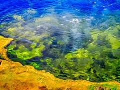 Yellowstone 131 (Susan Liepa) Tags: hot pool utah spring mat yellowstone bacteria thermal
