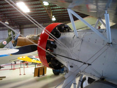 """Boeing P-12E (7) • <a style=""""font-size:0.8em;"""" href=""""http://www.flickr.com/photos/81723459@N04/9890985515/"""" target=""""_blank"""">View on Flickr</a>"""
