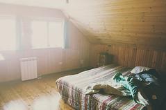 (Elenaire) Tags: light summer sun house home yellow 50mm gold golden bed bedroom nikon warm room 14 d5000