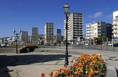 Boulogne-sur-Mer, quai Gambetta (Ytierny) Tags: france fleur horizontal architecture port quai manche ponton immeuble lampadaire tulipe pche pasdecalais boulognesurmer gambetta ctedopale boulonnais ytierny