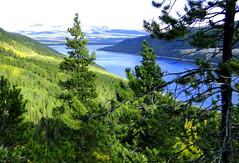 Turquoise Lake, Colorado (Mark Deisinger) Tags: autumn trees lake water rockies colorado september rockymountains