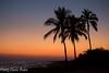 Hawaiian Sunset (laszlofromhalifax) Tags: ocean trees sunset usa hawaii twilight oahu coconut palm pacificocean hawaiian tropical honolulu tropics