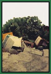 Just looking..... (Tricia in Kent UK ....☺) Tags: 1982 spetses justlooking greekisland