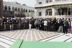 Devotees forming a queue inside the Golden Temple in Amritsar (Ashish A) Tags: india canon buildings carpet religious temple asia action religion crowd queue sikh devotee devotees amritsar digitalslr sikhism goldentemple canoncamera religioussymbol akaltakht goldentempleinamritsar canon650d canont4i peopleinaqueue peoplewearingturbans meninaqueue peopleinsidegoldentemple metalseparators queuesformenandwomen