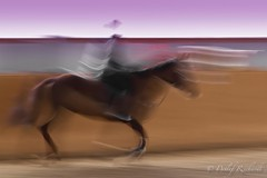 15.03.14: moving standstill (D.Reichardt) Tags: longexposure light horse abstract animal germany moving europe view ghost riding rider standstill sportmotion mygearandme