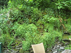 A Wall in the Grounds (Davydutchy) Tags: gardens hotel nice may charm wassenaar hospitality 2014 buitengoed hagenhorst