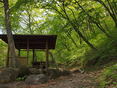 Early summer. Mt Akagi02 (stnk0245) Tags: summer green japan countryside early pavilion akagi