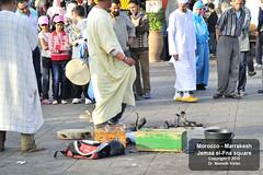 _D3S1575 Marrakesh - Jemaa el-Fna tr (Nmeth Viktor) Tags: viktor square morocco marrakesh jemaa elfna nmeth vilgutaz drnvq
