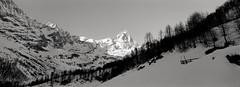 Mt Cervino (Matterhorn) (Joost Holthuizen) Tags: xpan hasselblad tmax100 matterhorn cervinia alps