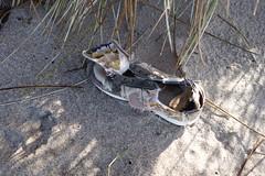 Nike shoe (Librarianguish) Tags: 217 darwinday oregon lincolncity esterlee ocean coast waves sand beach shoe nike nohumanfoot