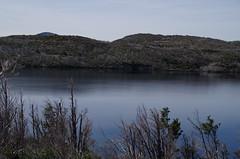 imgp3238 (Mr. Pi) Tags: trees lake hills chile andes nationalpark patagonia torresdelpaine lagoskottsberg