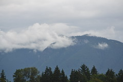 In a Mood (literalornotphoto) Tags: vancouver bc britishcolumbia canada pacificnorthwest pnw photographers photography mountains landscape forest mist clouds fog