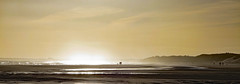 Shooting into the sun (Halfbike) Tags: alnmouth beachwalking seaside lumixgh4