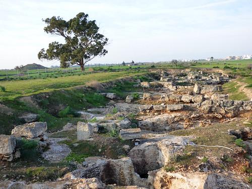 Royal Tombs , Tuzla, cemetery (13)