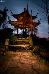 Chinese Tower Garden Building Temple Stuttgart Night Time Glowin (HunterBliss) Tags: arbor architecture asia asian background beautiful blue bridge china chinatown chinese color colorful culture dr foliage garden gardens green hangzhou house japan japanese lake lan landscape nature oregon oriental outdoors pagoda park plant pond portland roof scenic sky spring stone su summer sun tourism travel tree vancouver water zen