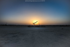 Sunset with Donkey (azahar photography) Tags: sunset bahrain donkey bluehour