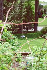 (xyvalerie) Tags: wood summer sun pool garden backyard suburbia bleedingheart wheelbarrow himalayan ropeswing