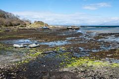 Isle Of Eigg - Image 124