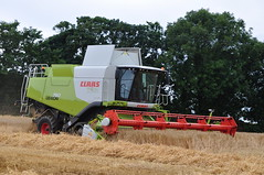 Claas Lexion 760 Terra Trac Combine Harvester cutting Winter Barley (Shane Casey CK25) Tags: county autumn ireland winter summer horse irish tractor field barley golden hp corn power cove farm cork farming grain harvest straw combine cutting land crops roberts farmer trailer agriculture drawn terra pulling harvester 820 tilling trac fendt 760 claas agri lexion tillage 2013