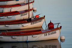 Mer adoptive... (NUMERIK33) Tags: bretagne bateaux explore erquy numerik33