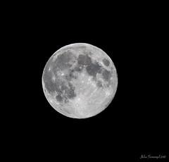 Blue Moon on August 20, 2013 (julesnene) Tags: california moon space fullmoon astronomy solarsystem bluemoon onceinabluemoon 400mm august20 skywatching 2013 fullsturgeonmoon grainmoon canoneos7d julesnene juliasumangil bluemoonaugust thegreencornmoon thefullredmoon