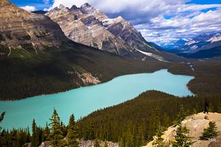 Banff NP-Peyto Lake