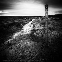 This way Glossop (Stuart Feurtado) Tags: path roman sky cloud moor moorland pavement stream derbyshire peakdistrict water monochrome bw blackandwhite nikon d600 nik niksw silverefex le long exposure nationaltrust