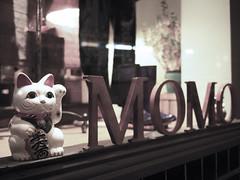 LauraSolt_MomoWindow3_Shops