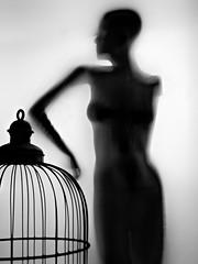 Escape with casualty (Siddiqui, sayeed) Tags: monochrome conceptual studiowork