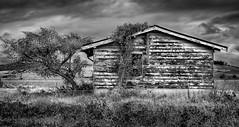 Abandoned (Jeff 05) Tags: