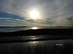 Lauwersmeer (llovmaartje) Tags: birds clouds halo groningen silhouet lauwersmeer cirrostratus nationaalpark ijskristallen vogelkijkhut vogelparadijs jaapdeensgat