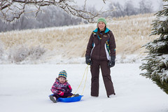 Sled Riding 2013-14 (TheDarrenSharp) Tags: winter evelyn mackie 3yearsold sledriding