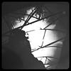 "Film Noir  >><< The Truth Revealed >><< An all Time Fave >><< ""The Third Man"" (Chic Bee) Tags: vienna arizona music selfportrait cinema love beautiful beauty sunshine architecture austria europe shadows tucson highcontrast style naturallight romance shade movies cinematography drama angst coldwar thethirdman filmnoir fallinginlove postwar selfie zither adolescence gardenornament orsonwells partialshade josephcotton filmstyle alidavalli strongshadows cameraangles antonkaras reflectiveball occupiedeurope myadolescence thirdmantheme 1949britishfilmnoir orsonwellsanythingmovies allaboutmoviescinema"