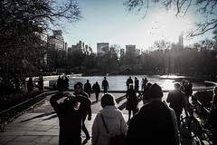 IMG_0066 (La Vida en Fotografas) Tags: park winter light people usa sun newyork day centralpark