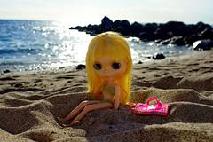 Méliflue sur les plages de La Réunion