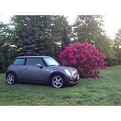 We wanted to share our 12th #anniversary in the U.S. with some of our amazing owners, especially those that have been with us since the beginning with their 2002 MINI vehicles! #MINI #miniacs - photo from miniusa (orlandomini) Tags: from 2002 our usa that 22 march us photo orlando amazing with florida anniversary united some mini since been we have vehicles beginning cooper wanted states their 12th those share especially clubman 2014 owners miniacs countryman paceman miniusa orlandomini 0605pm wwwiwantaminicom httpwwwfacebookcompagesp137773706313 httpswwwfacebookcomorlandominiphotosa10151445288746314107374183413777370631310151981429556314type1 httpsscontentaxxfbcdnnethphotosfrc1t1091969250101519814295563141048504934njpg