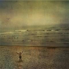 Joshua And The Ocean (2bmolar) Tags: beach joshua maine waybackmachine texturebyjerryjones sliderssunday perhapsbarharbor