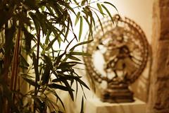 2014-04-18 (108/365) (Taema) Tags: cafe bokeh indian bamboo nataraja