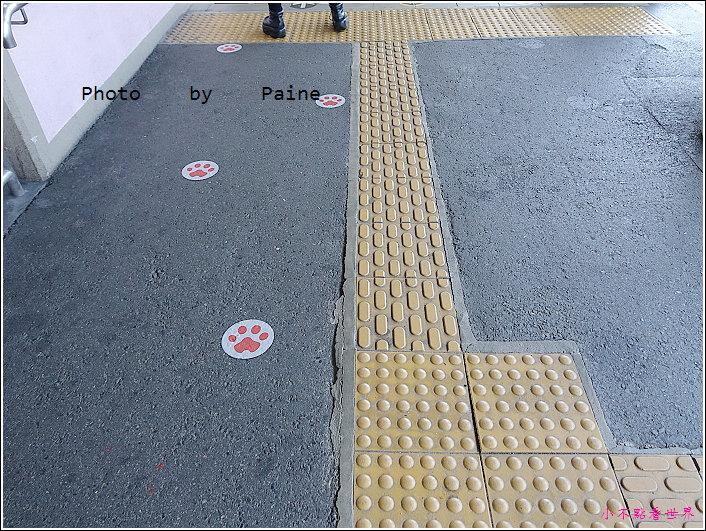 和歌山貴志站 (5).JPG