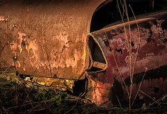 Child Of The 50s (rickhanger) Tags: abandoned abandonedcar chevy chevrolet rust rusty overgrown overgrowncar thesunshineyears