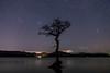 Milarrochy Bay (dalejckelly) Tags: canon 7dmarkii night nightsky astrophotography astronomy astro milkyway lochlomond visitscotland scotland scottish scenery scenic landscape stars milarrochybay trossachs outdoor winter