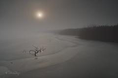 Pfäffikersee (Claudia Bacher Photography) Tags: pfäffikersee eis ice gefrohren froze sonnenaufgang sunrise schweiz suisse switzerland sonya7r winter landschaft landscape see lake nebel mist outdoor
