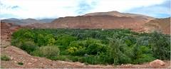 Cinq panoramiques de paysages entre Telouet et At-Ben-Haddou. 5/5 (Barbara DALMAZZO-TEMPEL) Tags: landscape oasis morocco maroc paysage panoramique oued routedetelouetatbenhaddou