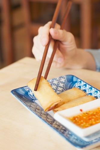 food essen hand chopsticks bok stäbchen afnikkor50mm114d frühlingsröllchen minispringrolls unrelatedmoviequote